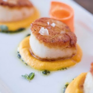 Scallops With Carrot Cream And Marjoram