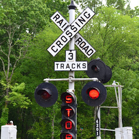 Train Stop by Carrie Cooper - Artistic Objects Signs