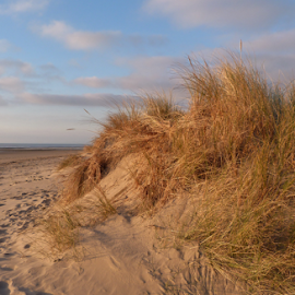 Dune and the sky. by Teresa Chadwick - Landscapes Beaches