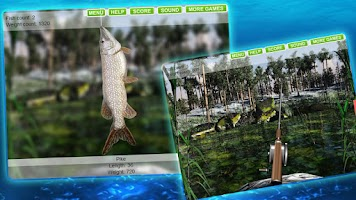 Screenshot of Fishing 3D - Fish Hunting