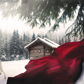 Red Riding Hood by Beth Schneckenburger - People Fashion ( girl, winter, red, wolf, snow )