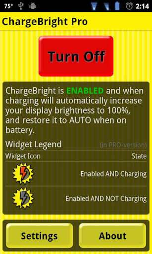 ChargeBright Pro