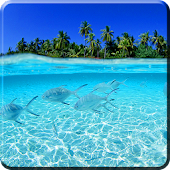 Free Download ocean live wallpapers APK for Samsung