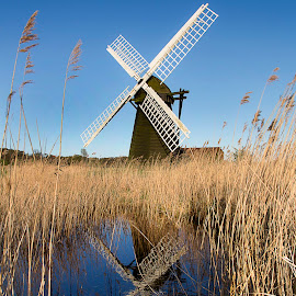 Herringfleet Smock Windmill by Dave Byford - Landscapes Prairies, Meadows & Fields ( water, england, reflections, suffolk, herringfleet, windmill, river, fields,  )