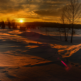 Sunset by Joseph Law - Landscapes Sunsets & Sunrises ( sunset, snow, golf club, cloudy, trees, shine upon )