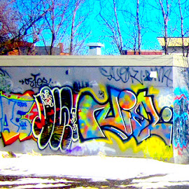 Winter Graffiti by Ronnie Caplan - City,  Street & Park  Neighborhoods ( montreal, sky, colourful, surface, winter, graffiti, snow, trees, shadows, branches, wall )