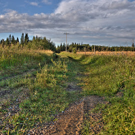by Keri Harrish - Landscapes Prairies, Meadows & Fields