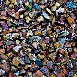hundred little stones by Magdalena Wysoczanska - Nature Up Close Rock & Stone