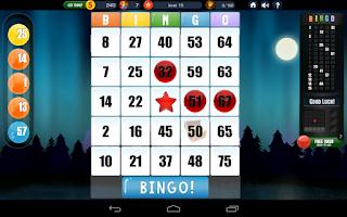 Screenshot of Absolute Bingo