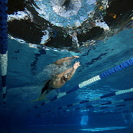 swimmer and UFOs by Adi Drnda - Sports & Fitness Swimming ( underwater, scuba diving, sport, swimming )