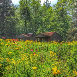 Are we there yet? by Wendy Greenhut - Landscapes Prairies, Meadows & Fields ( hdr, hdr_pics, royalsnappingartists, rsa_trees, rsa_nature, rsa_flowers, natureelite, bestnatureshot, nature_perfection )