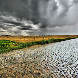 Pavè by Tonino De Rubeis - Landscapes Weather ( pavè, belgio )
