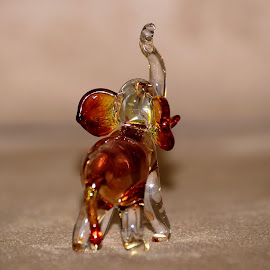 Beauty of A Crystal Elephant by Dinkar Viswambharan - Artistic Objects Glass
