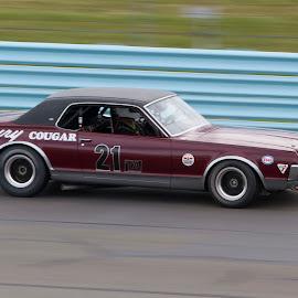 1967 Mercury Cougar Trans Am Car by Chuck Brandt - Transportation Automobiles ( mercury cougar 1967 trans am watkins glen )