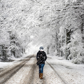 Mississippi Snow by Rory Doyle - Landscapes Weather ( snow, weather, mississippi delta, snowday, landscape, cleveland )