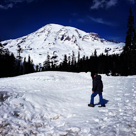 by Laura Cloutier - Instagram & Mobile iPhone ( mtrainier, snow, pnw, washingtonstate )