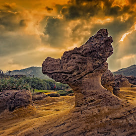 Dragon Head Rock at Yehliu Geopark by Crispin Lee - Nature Up Close Rock & Stone