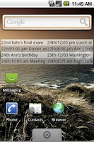 Screenshot of Max Calendar Widget