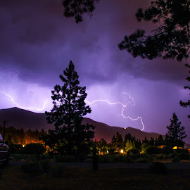 Lightning Strike by Trevor Fairbank - Landscapes Weather ( lightning, thunderstorm, camping, pine tree, nevada, weather, beach )