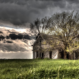 Never Forgotten by Chris Chalfant - Landscapes Prairies, Meadows & Fields