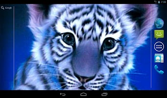 Screenshot of Blue Tiger Live Wallpaper