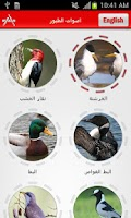 Screenshot of اصوات الطيور - Birds Sounds