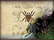Runescape HD