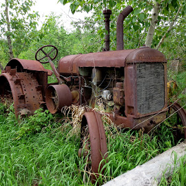 Rusty Old Tractor by Linda Doerr - Transportation Other ( grass, rusty, antique, tractor, abandoned,  )