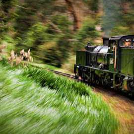 Puffing Billy by Aaron Stott - Transportation Trains ( land, device, transportation )