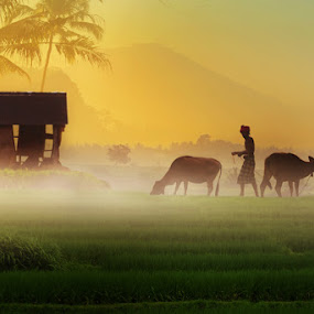 Morning Village by Bli Gede Bagoes IGPWT - People Street & Candids