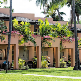 tropical hotel by Vibeke Friis - Buildings & Architecture Office Buildings & Hotels ( sheraton fiji )