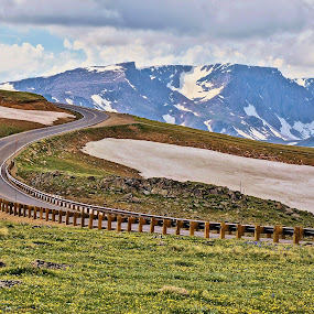 Beartooth Highway by Jim Czech - Landscapes Mountains & Hills ( mountains, highway, tundra, scenery, road, mountain flowers, peaks,  )