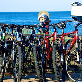 by Terry Sharrieff - Transportation Bicycles