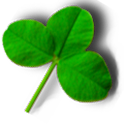 Clover Meister 2.0 icon