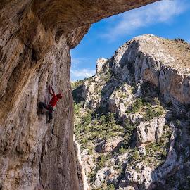 Funpig by Climb Globe - Sports & Fitness Climbing ( climbing, rock climbing, sunset alley, utah, funpig, saint george )