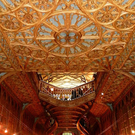 Lello Bookshop by Ljiljana Pejcic - Buildings & Architecture Other Interior