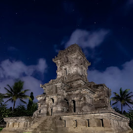 singosari temple by Hill S - Buildings & Architecture Statues & Monuments ( temple, dinasty, building, indonesia, asia, artistic, java, hindi )