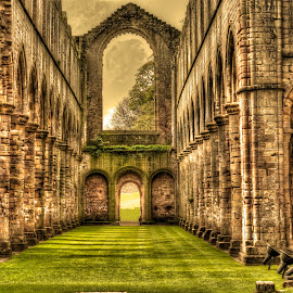 The Cloisters by Simon O'Neill - Buildings & Architecture Decaying & Abandoned