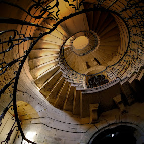 Round and Round by Phil Robson - Buildings & Architecture Architectural Detail ( delaval hall, spiral staircase, northumberland, architecture, national trust )