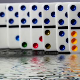 by Dipali S - Artistic Objects Other Objects ( reflection, artistic, game, dominoes, row )