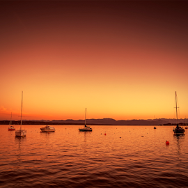 Tutzing sunset by Markus Gann - Landscapes Sunsets & Sunrises ( europe, nice, beauty, travel, landscape, glow, coast, mountains, typical, tutzing, sky, bavaria, nature, sunny, weather, light, evening, black, alps, water, orange, peaceful, outlook, wallpaper, beautiful, mood, horizon, lake, sunlight, boat, bird, vacation, season, color, sunset, outdoor, wave, silence, starnberg, night, scenery, view, golden )