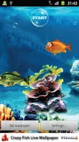 Screenshot of Crazy Fish Live Wallpaper Free