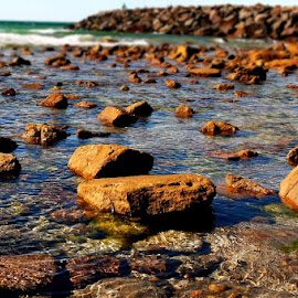 Rocky Shores by Leigh Martin - Nature Up Close Rock & Stone ( beach rocks calm seas )