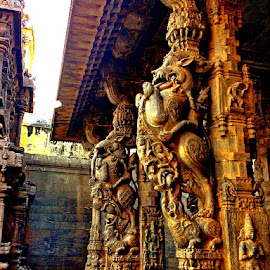 Sculpted pillars at the Vellore Temple by Ami Bhat - Buildings & Architecture Places of Worship ( temple, sculpture, sculpted pillars, vellore, pillars )