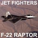 F-22 Raptor PRO icon