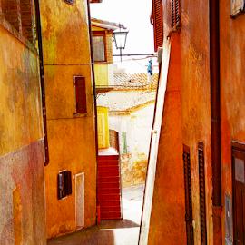 Tuscany  by Katarzyna Malinowska - City,  Street & Park  Neighborhoods ( maremma toscana tuscany old town magliano orange yellow summer )