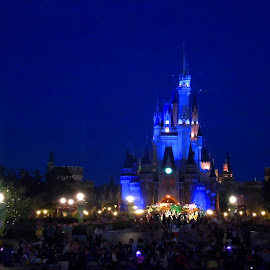 Disney Castle at Night by Joy Ali - City,  Street & Park  Amusement Parks ( Lighting, moods, mood lighting )