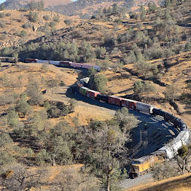 Winding it's way up the mountain by Tom Lynch - Transportation Trains ( leading lines, color, transportation, trains, s curves,  )