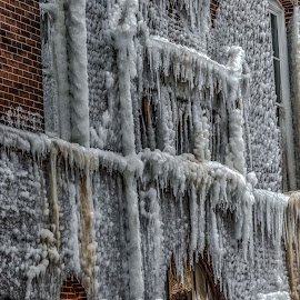 frozen by Fred Faulkner - City,  Street & Park  Neighborhoods ( lincoln park, ice, aftermath, icecicle, chicago, mulligan school, fire )