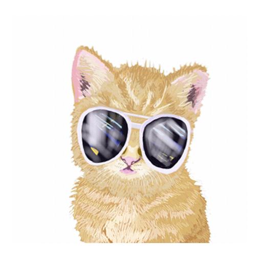 觸摸寵物動態壁紙3 解謎 App LOGO-APP開箱王